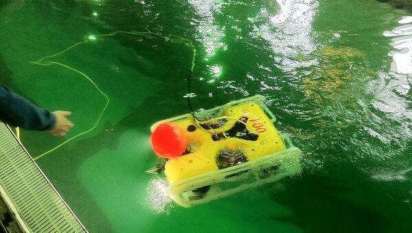 Телеуправляемый необитаемый подводный аппарат «Марлин-350» производства «Тетис Про». Архивное фото