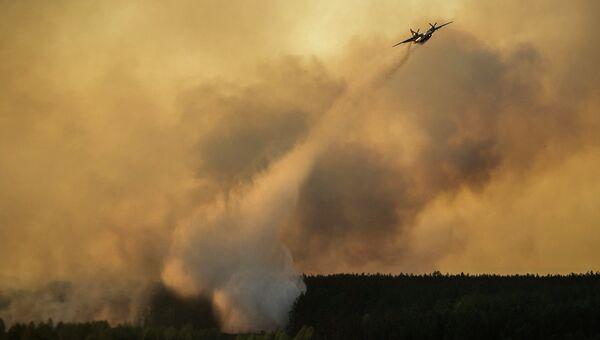 Тушение пожара в Чернобыльской пуще. Архивное фото