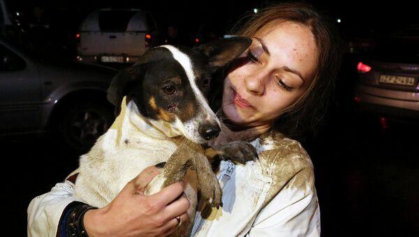Собака, спасенная из зоны затопления в Тбилиси. Июнь 2015