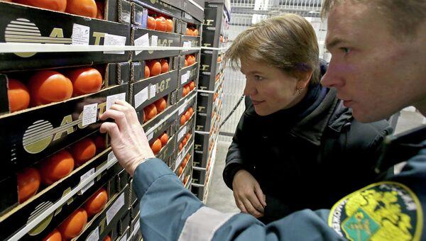 Работники таможенного поста российско-польского участка государственной границы досматривают партию помидоров. Архивное фото