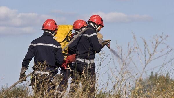 Пожарные тушат огонь в лесу. Архивное фото