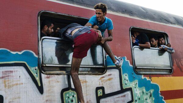 Мигранты на македонско-греческой границе. 12 августа 2015 год