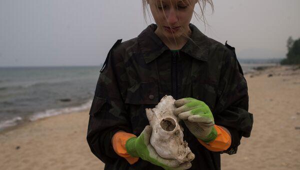 Работа волонтеров Байкальской береговой службы