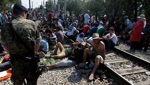 Полиция Македонии задерживает мигрантов на территории между Грецией и Македонией. Август 2015