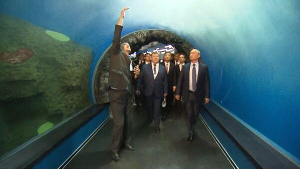 Огромные аквариумы и туннели: Путин осмотрел океанариум на острове Русский
