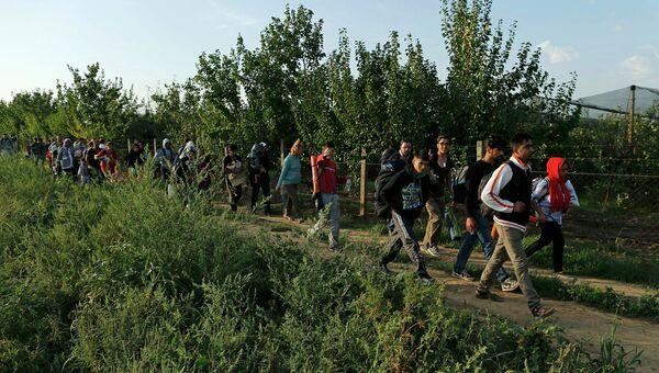 Группа беженцев двигаются в сторону границы Сербии с Хорватией. 16 сентября 2015