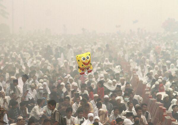 Праздник Курбан-байрам на острове Суматра