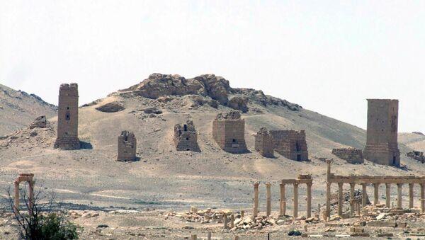 Вид Пальмиры, Сирия. Архивное фото