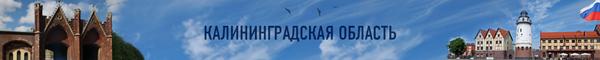 Шапка спецпроекта Калининградская область