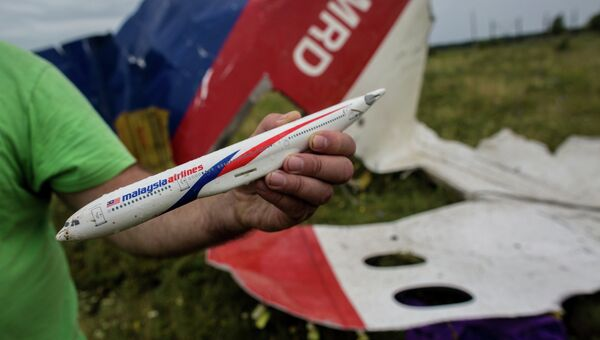 Поисковые работы на месте крушения малайзийского лайнера Boeing 777 в районе Шахтерска. Архивное фото