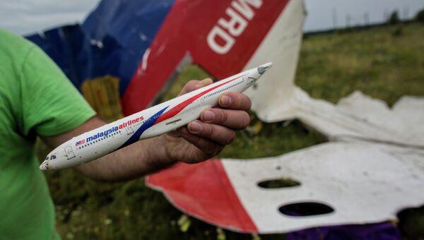 На месте крушения малайзийского лайнера Boeing 777. Архивное фото