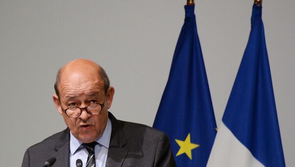 Министр обороны Франции Жан-Ив Ле Дриан. Архивное фото