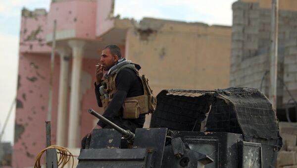 Иракские силы безопасности в провинции Анбар. Архивное фото