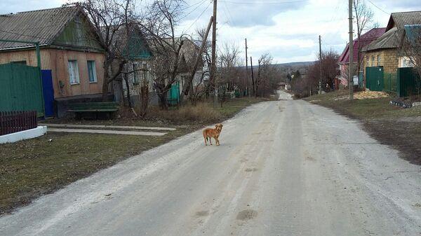 Населенный пункт Веселая Гора (ЛНР)