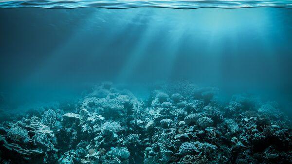 Глубины океана