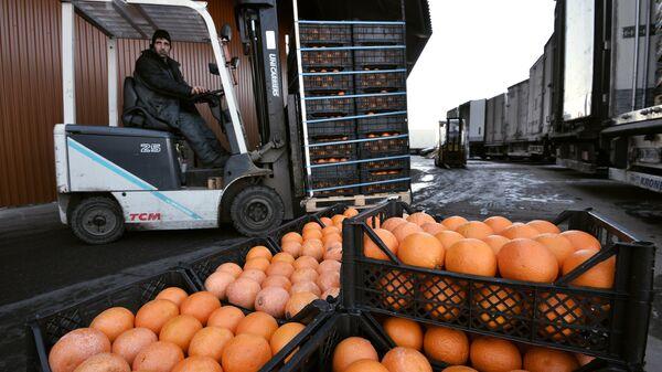 Грейпфруты на складе с сирийскими продуктами в агрокластере Фуд Сити в Москве