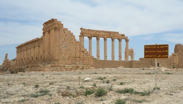 Храм Бэла в исторической части Пальмиры. Архивное фото