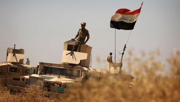 Иракские военные на подступах к Мосулу