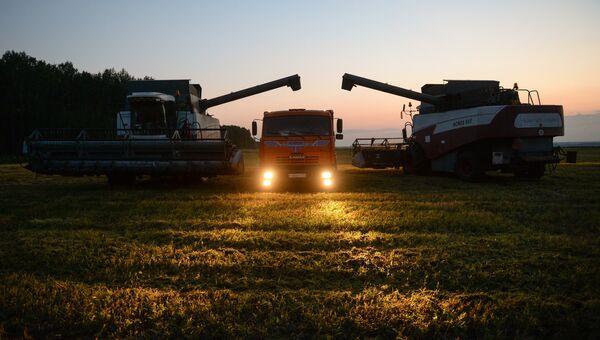 Уборка урожая зерновых культур в Новосибирской области. Архивное фото