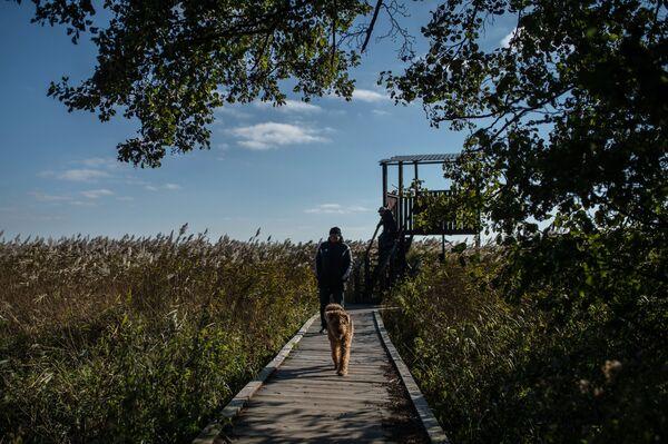 Посетители гуляют на берегу Куршского залива в национальном парке Куршская коса