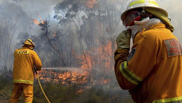 Лесные пожары в Австралии. Октябрь 2013 года