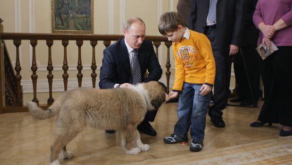 Владимир Путин в подмосковной резиденции Ново-Огарево встретился с Димой Соколовым, который придумал кличку для собаки. Новую собаку премьер-министра РФ В.Путина, которую ему подарили в Болгарии, будут звать Баффи