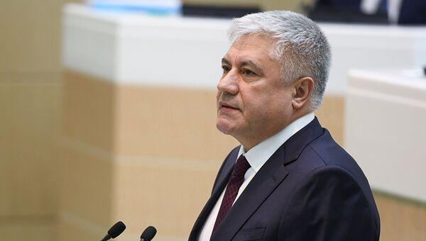Министр внутренних дел РФ Владимир Колокольцев на заседании Совета Федерации РФ