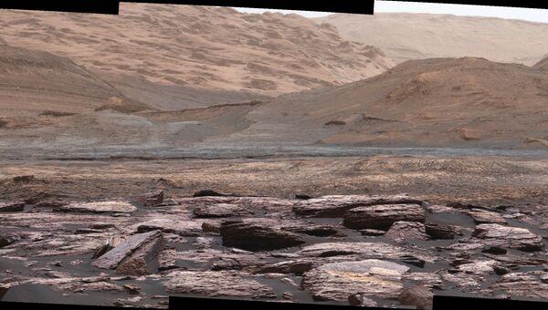 Фиолетовые булыжники, открытые марсоходом Curiosity