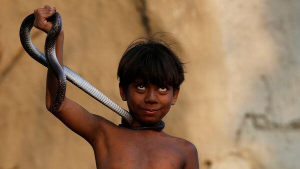 Мальчик со змеей в поселении заклинателей змей Jogi Dera в штате Уттар-Прадеш, Индия