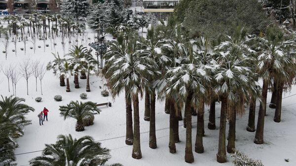 Снегопад в Сочи