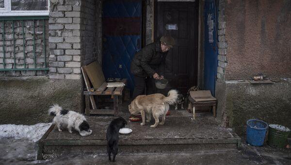 Женщина кормит собак в Киевском районе Донецка