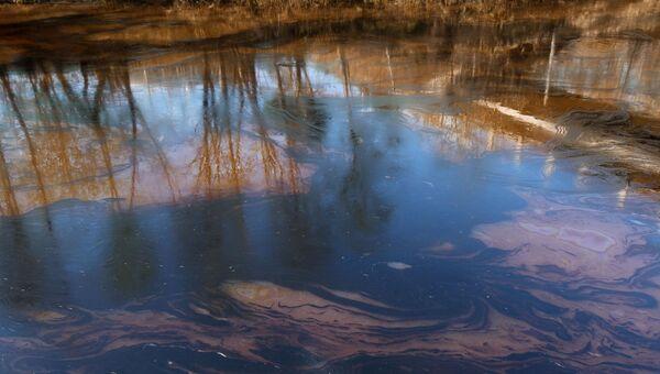 В Балашихе прекратили сброс неочищенных сточных вод в реку Пехорку