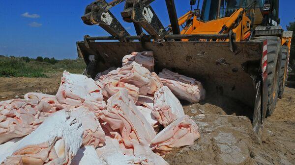 Уничтожение санкционных продуктов в Калининграде