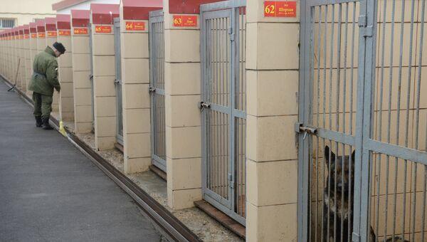 Служебные собаки Росгвардии в вольерах кинологического центра. Архивное фото