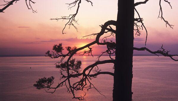 Национальный парк Сенгилеевские горы. Архивное фото