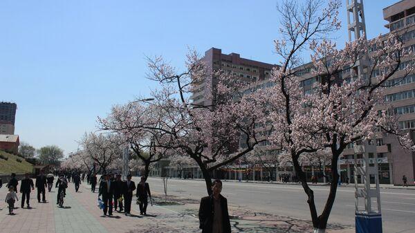 Жители на улице Пхеньяна