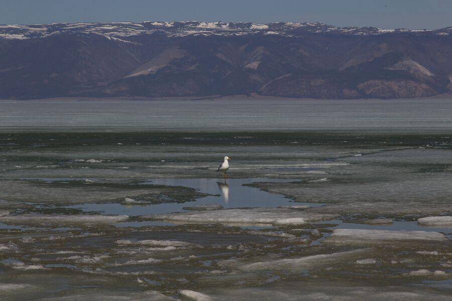 Малое море, озеро Байкал