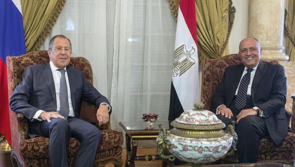 Министр иностранных дел РФ Сергей Лавров и министр иностранных дел Египта Самех Шукри во время встречи в Каире. 29 мая 2017