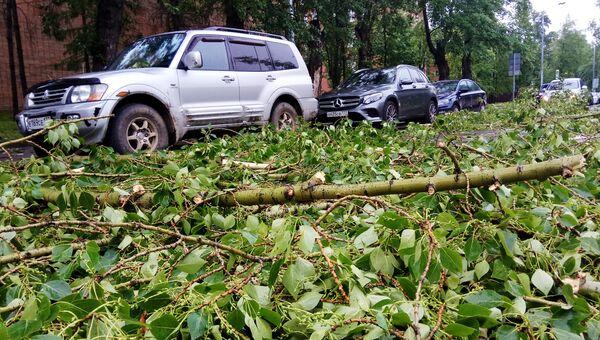 Автомобили, пострадавшие в результате урагана. Архивное фото