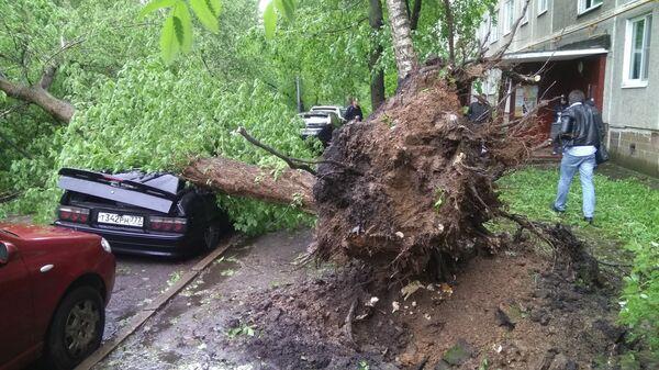 Последствия шквалистого ветра в Москве. 29 мая 2017