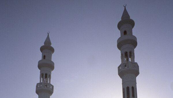 Одна из мечетей города Абу-Даби