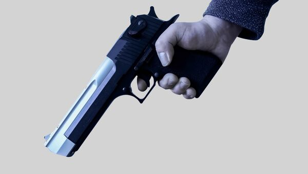 Пистолет Desert Eagle. Архивное фото