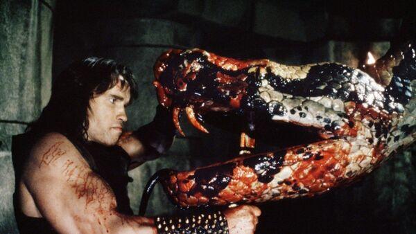 Кадр из фильма Конан-варвар