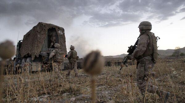 Американские военные проходят через маковое поле во время операции в провинции Гильменд, Афганистан