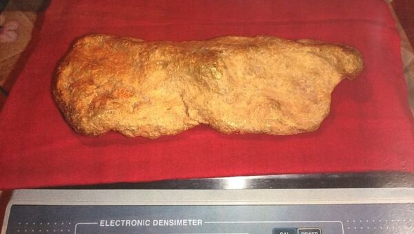 Самородок золота весом 10,3 килограмма