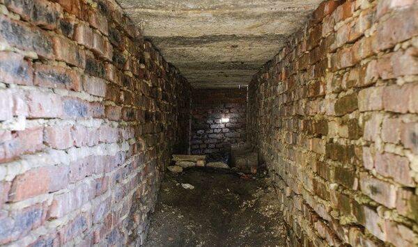 Заброшенный подвал в поселке Шварцевский Киреевского района, где истязали 5-летнюю девочку