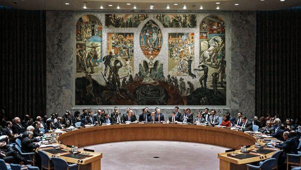 Зал заседаний Совета Безопасности ООН в Нью-Йорке. Архивное фото