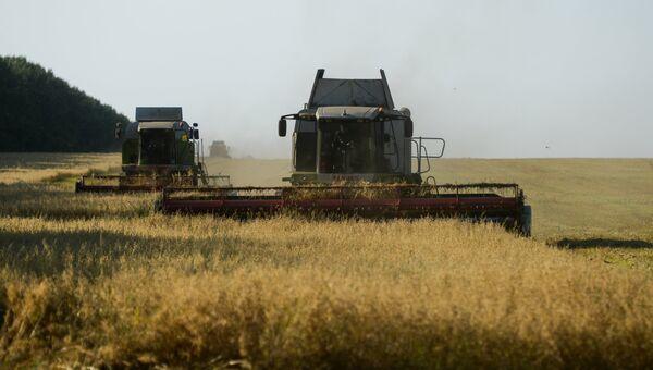 Уборка урожая овса. Архивное фото