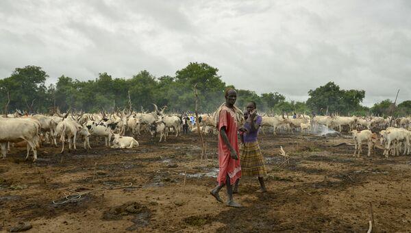 Пастухи и их стадо в лагере близ города Румбек в Южном Судане. Архивное фото