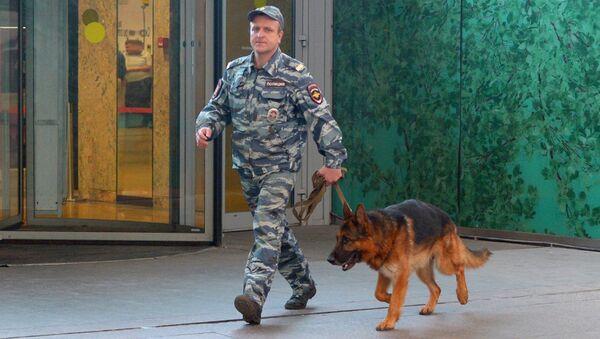 Кинолог с собакой после сообщения о минировании. Архивное фото